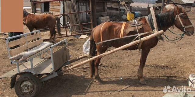 Тачанка для лошади своими руками