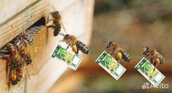 Поздравления на 50 лет пчеловоду