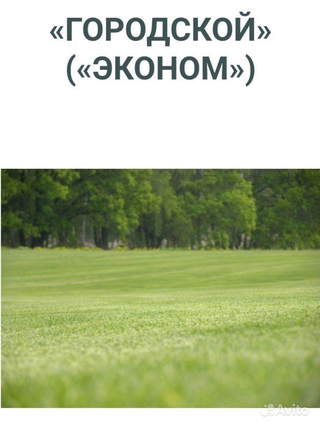 Рулонный газон купить на Зозу.ру - фотография № 4