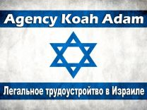 Работа в Израиле, мойка посуды, уборка кухни