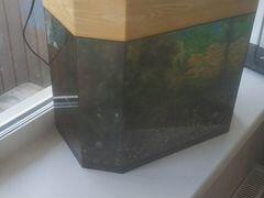 Продам аквариум со всем прилагающимся внутри 50 ли
