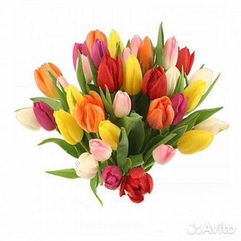 Купить тюльпаны санкт петербург ромашки цветы в курске купить