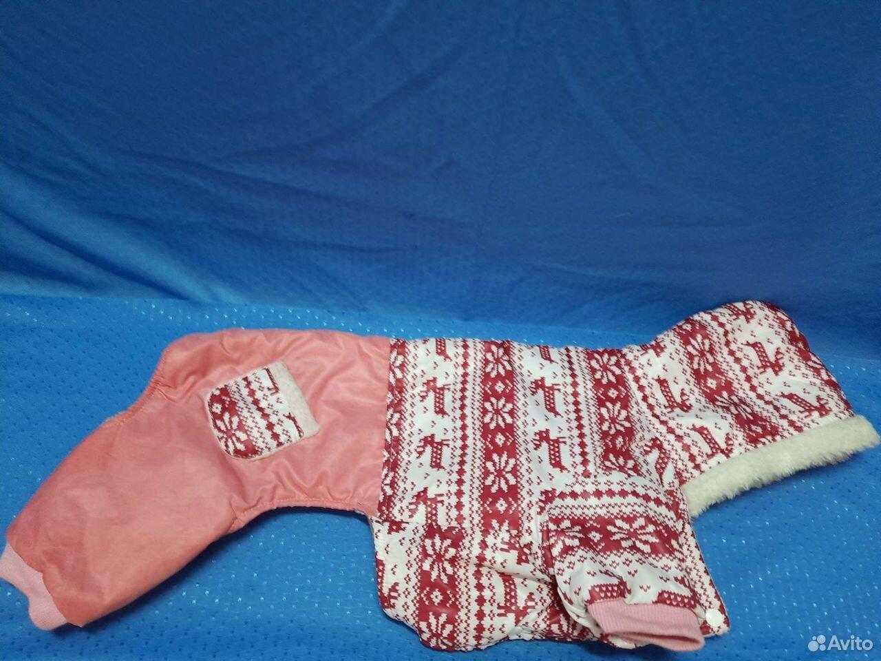 Комбез для небольшой собаки  89512258580 купить 1